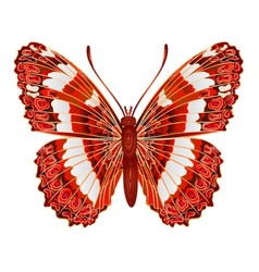 Butterfly limenitis camilla forest butterfly vector