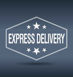 Express delivery hexagonal white vintage retro vector