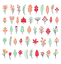 Set of leaves and flowers vector