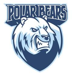 polar bear head mascot vector image vector image