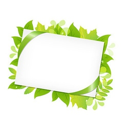 Green Leafs And Blank Gift Tag vector image