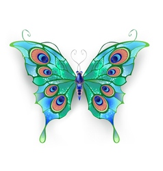 Green butterfly vector
