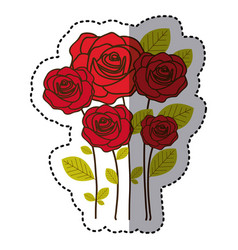 red many roses with oval petals icon vector image