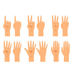 Hand counting signs vector