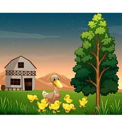 A duck and her ducklings across the barnhouse at vector