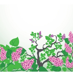 Abstract background with floral vector