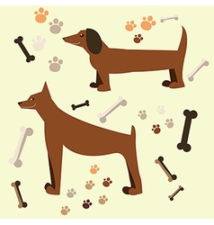 Flat design of the dog doberman and dachshund vector