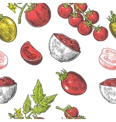 Seamless pattern with Tomato half slice and vector image vector image