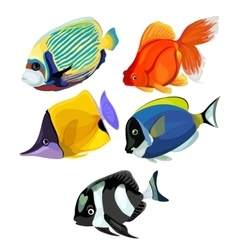 Collection of colored tropical fishes isolated vector