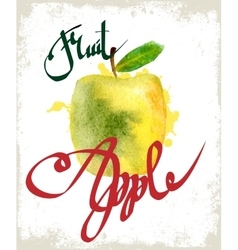 Drawing apple lettering vector