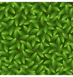 Green leaves pattern Seamless vector image vector image