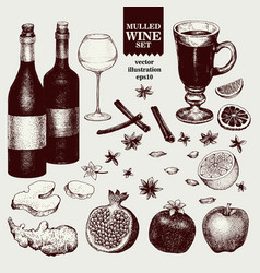Mulled wine and spices orange apple pomegranate vector