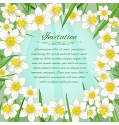 Floral background with white narcissus vector