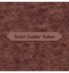 Brown crumpled leather texture vector