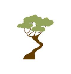 Green tree bonsai decoration garden image vector