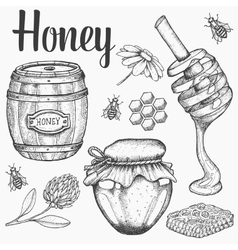 Honey jar barrel spoon bee honeycomb vector image