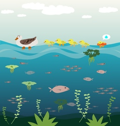 Mother duck teach her baby swimming vector