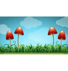 Scene with mushrooms in the field vector
