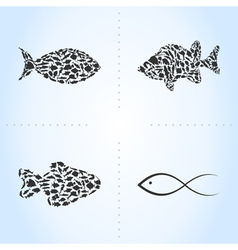 Fish an icon vector
