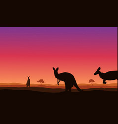 Beauty landscape kangaroo on hill silhouettes vector