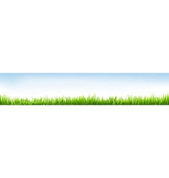 Header with grass vector