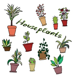 Bright set of house plants in pots with an inscrip vector