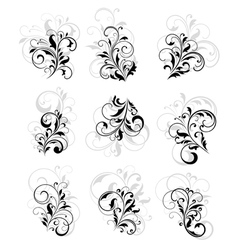 Flourish design elements vector