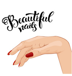 beautiful manicure vector image vector image
