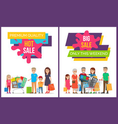 hot and big sale collection vector image