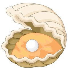 Oyster with a pearl vector