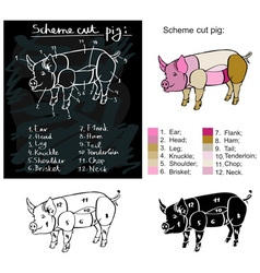 Scheme cutting pig vector