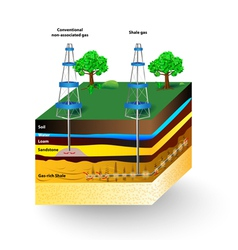 Shale gas vector
