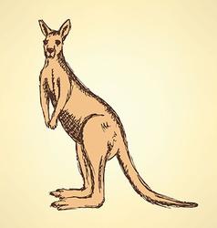 Sketch australian kangaroo in vintage style vector