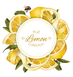 Lemon round banner vector