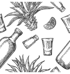 Seamless pattern of glass bottle tequila salt vector