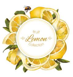 Lemon round banner vector