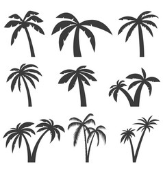 set of palm tree icons isolated on white vector image vector image