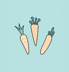 carrot card vector image