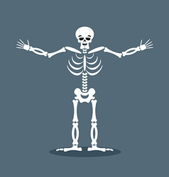 Happyl skeleton stretched out his arms in an vector