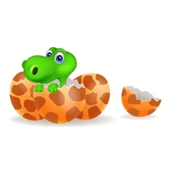 Cartoon of a baby dinosaur hatching vector