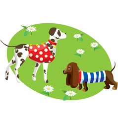 Dogs in clothes vector
