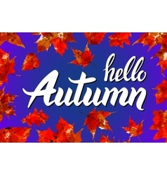 Hello Autumn Goodbye Summer The trend vector image