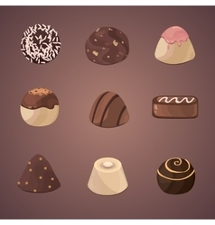 set of chocolate candies vector image