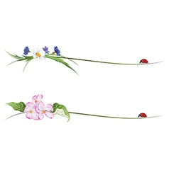 vignette with flowers and ladybird vector image vector image