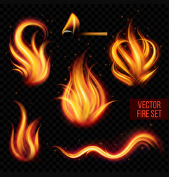Painted transparent fire on a black background vector