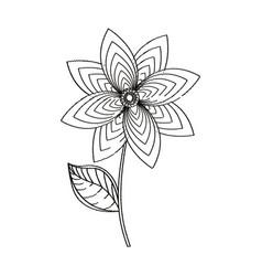 flower decoration garden sketch vector image