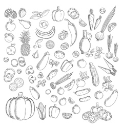Fresh sketched fruits and vegetables icon vector image