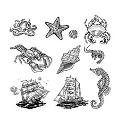 sea life icons vector image