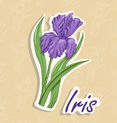 background with a flower Hand drawing of an vector image vector image