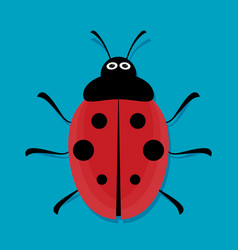 cute ladybug flat vector image vector image